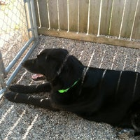 Photo taken at Door County Humane Society by Anne B. on 3/17/2012