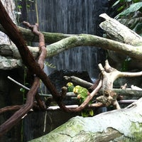 Photo taken at The Rainforest by Melanie M. on 7/29/2012