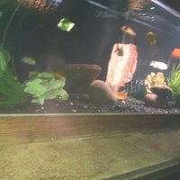 Photo taken at The Aquarium on 6th by Reina H. on 6/22/2012