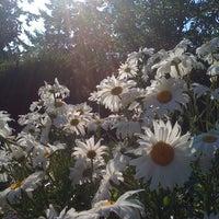 Photo taken at Sleeping Dog Farm by LizZdunich N. on 7/17/2012