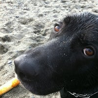 Photo taken at Edmonds Off-Leash Dog Park by ✨ananabana✨ on 4/6/2012