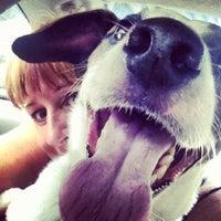 Photo taken at Greyhound Bus Station by Linda H. on 8/10/2012