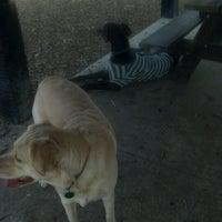 Photo taken at Robert A. Stuart Dog Park by Nikki C. on 3/15/2012