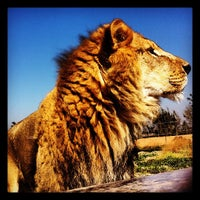 Photo taken at Parque Safari by Gonzalo H. on 4/21/2012