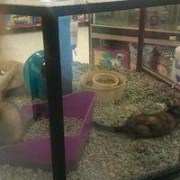 Photo taken at Petco by Jenn C. on 10/29/2011