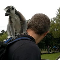 Photo taken at Blackpool Zoo by Speccy on 10/18/2011