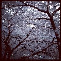Photo taken at Nagoya International Center by Dominion525 on 4/10/2012