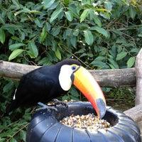 Photo taken at Gramado Zoo by Mirela F. on 5/19/2012