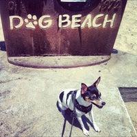 Photo taken at Ocean Beach Dog Beach by @Roem on 6/30/2012