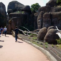 Photo taken at Burgers' Zoo by Marja v. on 8/4/2012