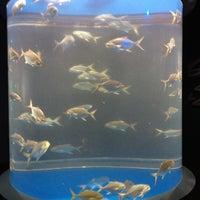 Photo taken at Texas State Aquarium by Evan L. on 9/3/2012
