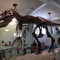 Photo taken at David H. Koch Dinosaur Wing by Davide M. on 5/29/2012