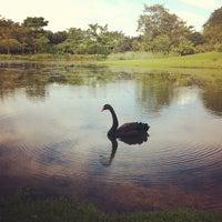 Photo taken at Singapore Botanic Gardens by Arleni N. on 4/2/2012