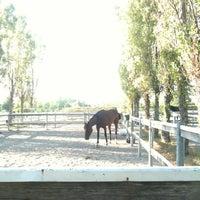 Foto scattata a Parco Ippodromo da Guendalina B. il 8/16/2012