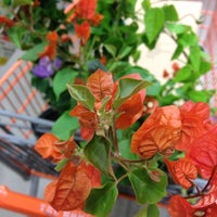 Photo taken at The Home Depot by Bil B. on 7/31/2012