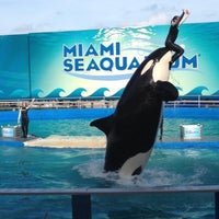 Photo taken at Miami Seaquarium by Silver on 8/29/2012