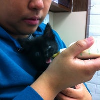 Photo taken at Westborough Pet Hospital by Ernest T. on 6/4/2012