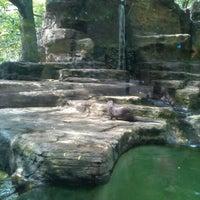 Photo taken at John Ball Zoo by Bryan P. on 9/2/2012