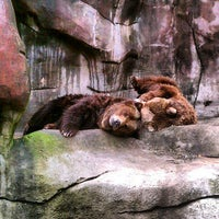 Photo taken at John Ball Zoo by Christopher V. on 4/15/2012