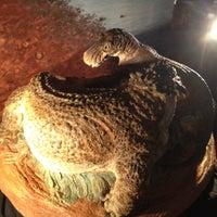 Снимок сделан в Вятский палеонтологический музей пользователем Ksu Y. 5/18/2012
