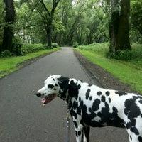 Photo taken at Otsiningo Park by Ashley L. on 7/19/2012