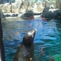 Photo taken at Sea Lion Cave by Mike C. on 6/22/2012