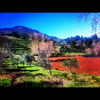 Photo taken at Benziger Family Winery by Mike C. on 2/16/2012