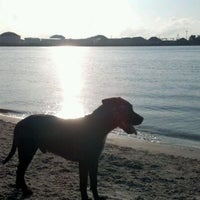 Photo taken at Davis Island Dog Park by MiLLeNNiumIAM on 7/1/2012