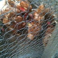 Photo taken at Hattie Carthan Community Garden by Richelle T. on 8/24/2012