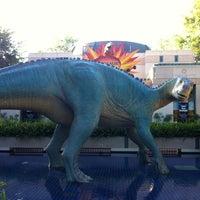 Photo taken at DinoLand U.S.A. by Jeffrey C. on 3/19/2012