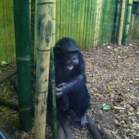 Photo taken at Maryland Zoo in Baltimore by Jennifer S. on 2/11/2012