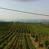 Photo taken at Erede di Chiappone Armando winery by Wineup on 9/6/2012
