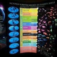 Снимок сделан в Вятский палеонтологический музей пользователем Anna Y. 7/17/2012