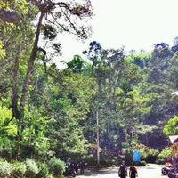 Photo taken at Air Terjun Sg. Gabai (Waterfall) by Shafiq M. on 3/10/2012