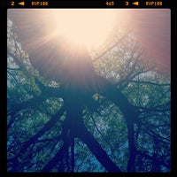 Photo taken at Toledo Botanical Garden by Stacey M. on 7/11/2012