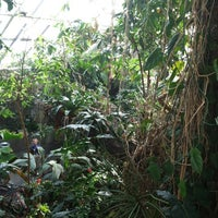 Photo taken at The Rainforest by Kaitlin F. on 3/15/2012