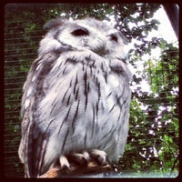 Photo taken at Zoo Berlin by Christian B. on 8/10/2012