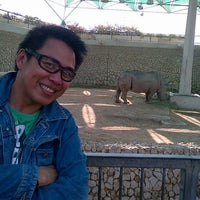 Photo taken at Doha Zoo by Mark Tammy on 2/14/2012