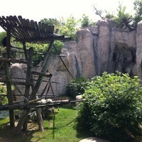 Photo taken at World of Primates at Ft. Worth Zoo by Chris G. on 4/7/2012