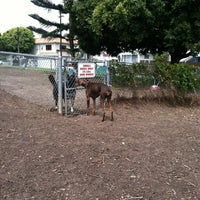 Photo taken at Westminster Dog Park by Lisa M. on 6/9/2012