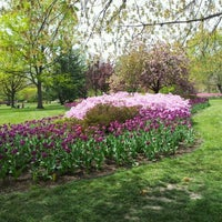Photo taken at Sherwood Gardens by Pete C. on 4/14/2012