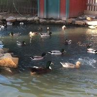 Photo taken at Olde Mystic Village by Keir H. on 3/10/2012