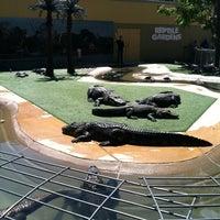Photo taken at Reptile Gardens by Sara B. on 7/18/2012