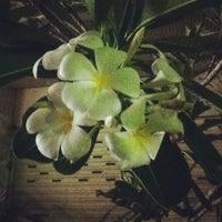 Photo taken at การท่องเที่ยวแห่งประเทศไทย by Kritsanucha® W. on 3/30/2012