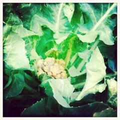 Photo taken at Secret Garden by Arthur T. C. on 7/14/2012