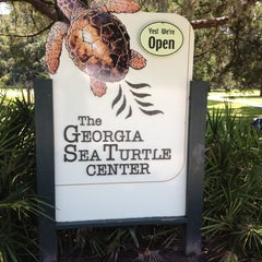 Photo taken at Georgia Sea Turtle Center by Matthew C. on 9/1/2012