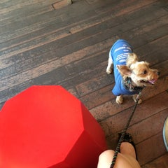Photo taken at Roasting House COFFEE TREE by Soohyun L. on 9/6/2014