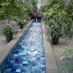 Photo taken at United States Botanic Garden by Tiffany W. on 2/17/2013