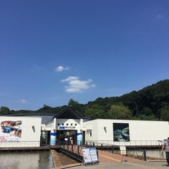 Photo taken at 相模川ふれあい科学館 アクアリウムさがみはら by Kohei K. on 9/23/2015
