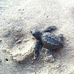 Photo taken at Playa Bonfil by Ingrid M. on 1/1/2013